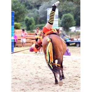 Voltige gymnastics on a pony