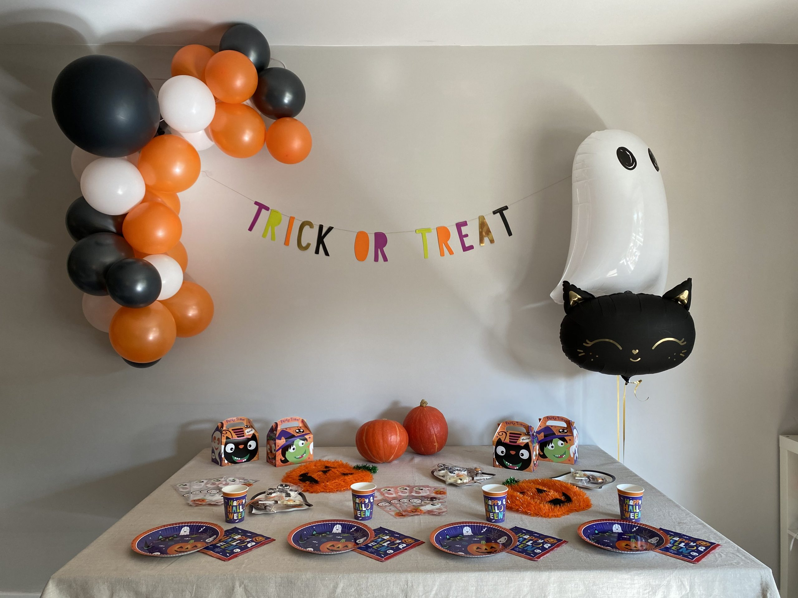 Trick or Treat Party Decorations