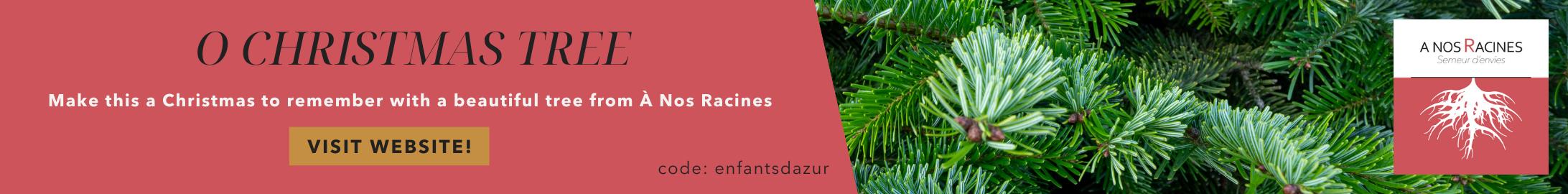 Blog Banner A nos Racines sapin-2